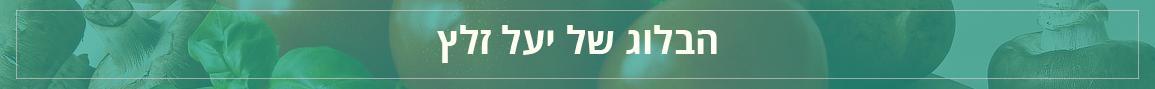 הבלוג של יעל זלץ