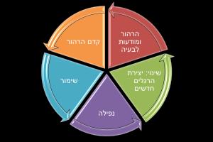 מעגל השינוי