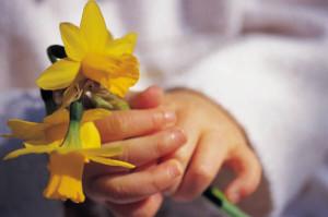 פרחים ביד